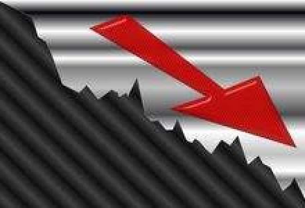 Piata bunurilor de folosinta indelungata a scazut in 2010 cu 15%