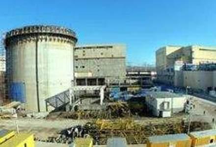 Ariton: Unitatile 3 si 4 de la Cernavoda pot fi construite cu companii romanesti
