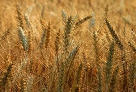 Fermierii vor putea lua de la banci credite cu dobanda redusa
