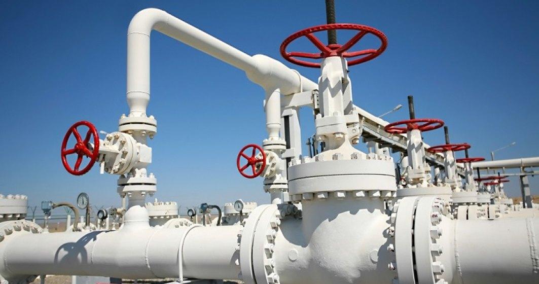 Statul a pierdut 7 miliarde de lei pentru ca nu a actualizat pretul de referinta al gazelor