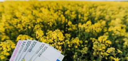 Cum poți să accesezi fonduri în agricultură de la stat: de câți bani ai...