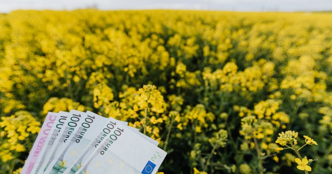 Cum poți să accesezi fonduri în agricultură de la stat: de câți bani ai nevoie și ce pași ar trebui să urmezi