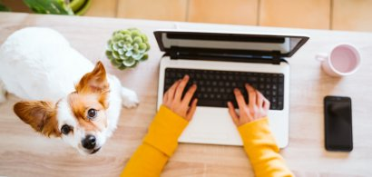 De la birou, la spațiul virtual de lucru. Cum se poate crea un birou virtual...