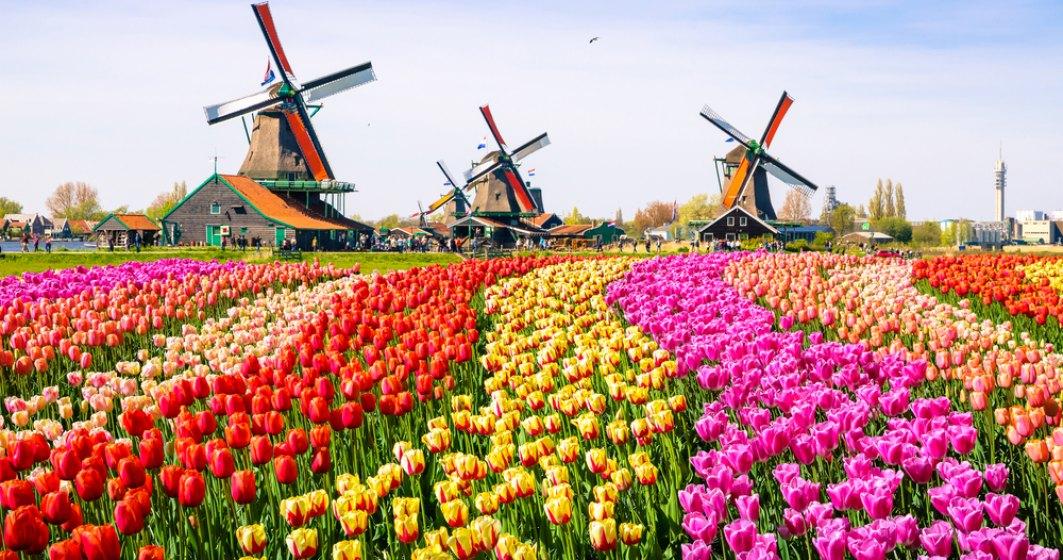 Olanda si-a schimbat numele de la 1 ianuarie 2020