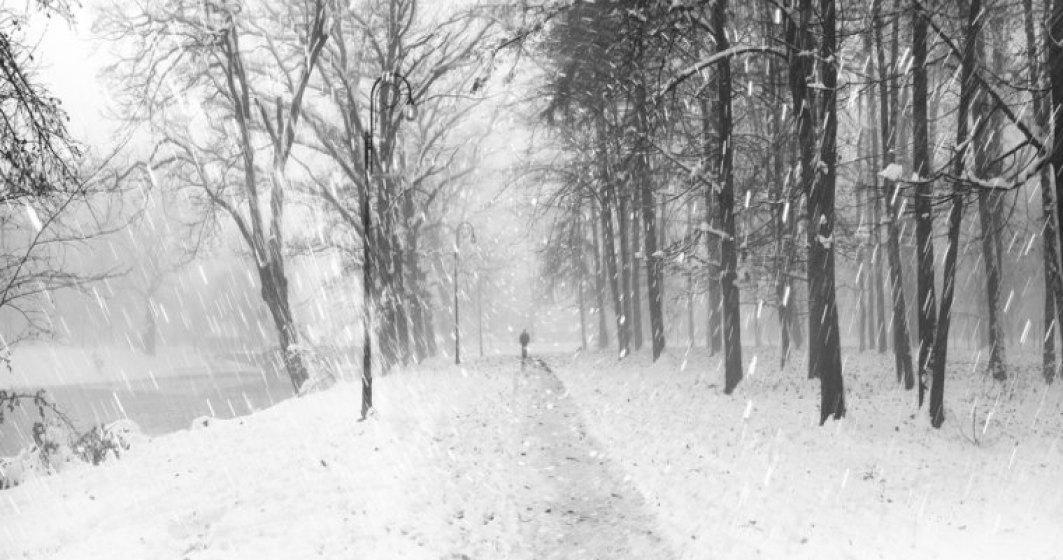 Prognoza meteo vineri 14 decembrie. Cod portocaliu de ninsori si viscol