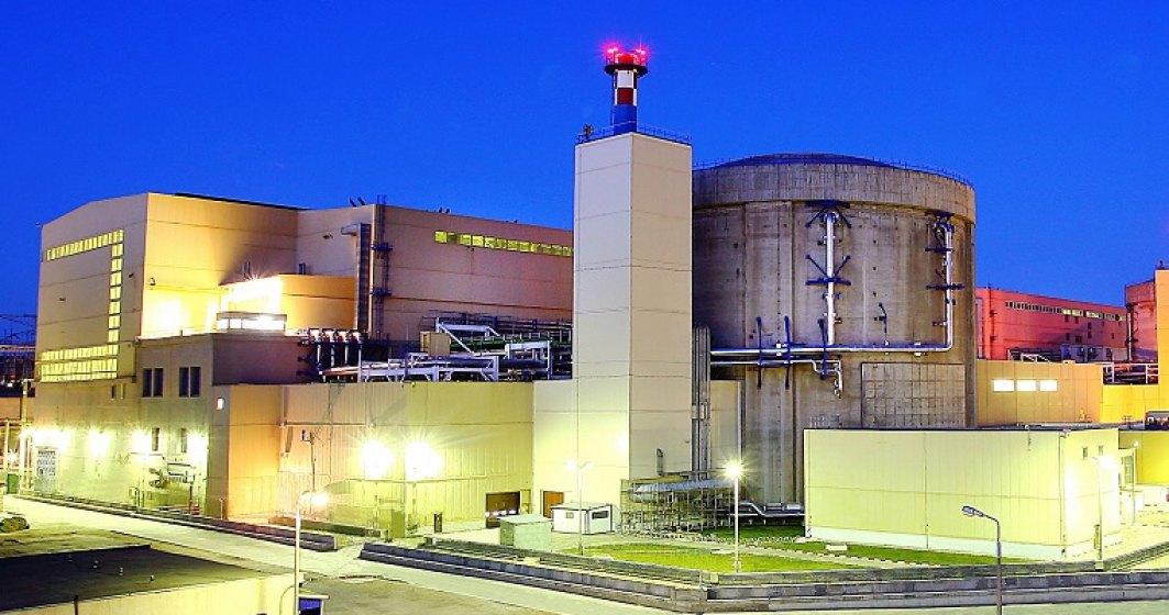 Nuclearelectrica estimeaza o crestere de cinci ori a profitului in 2018