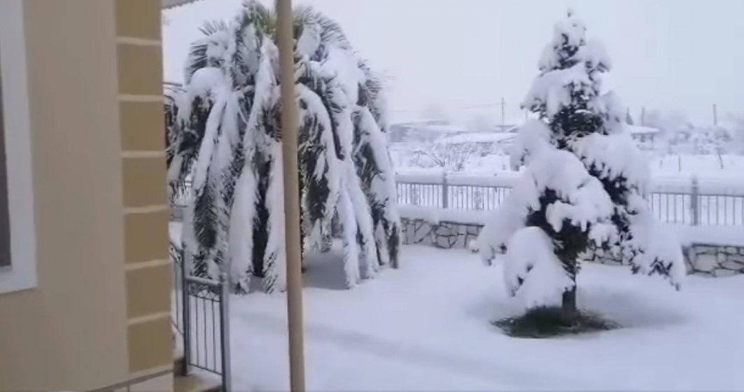 Grecia se confruntă cu o puternică furtună de zăpadă