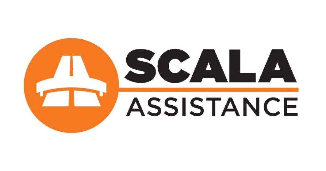(P) De la pionierat la maturitate: Scala Assistance, compania care a introdus conceptul vanzarii de roviniete online