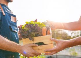 Profi lansează Proaspete de la noi, un program pentru fructe și legume care...