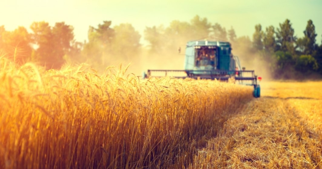 Exporturile de produse agroalimentare romanesti in Italia au scazut cu 25% in 2016