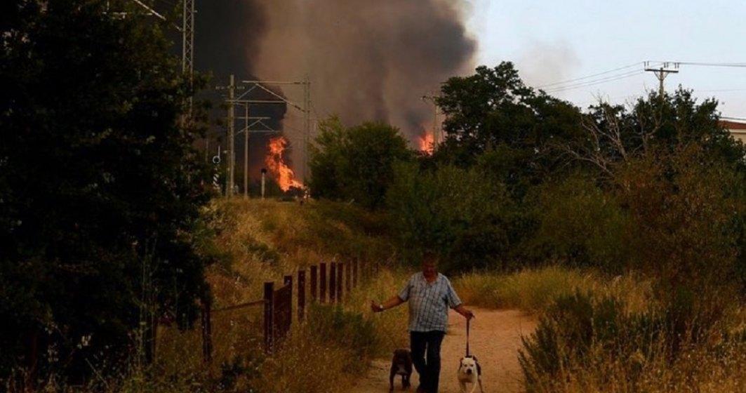 Anchetă în Grecia. Se crede că anumite incendii au fost provocare intenționat