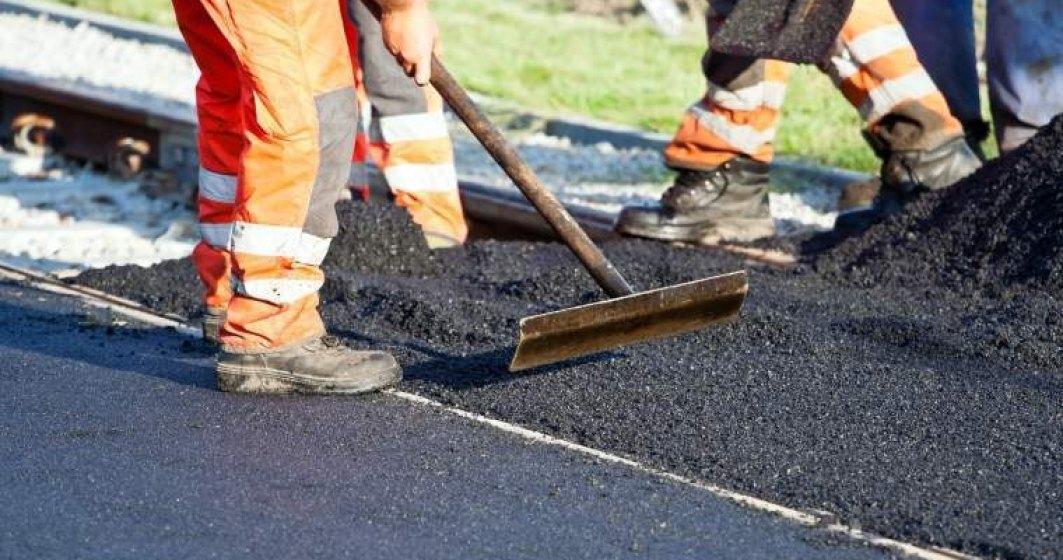 MT: Al doilea ecoduct pentru ursi va fi construit pe Autostrada Lugoj-Deva