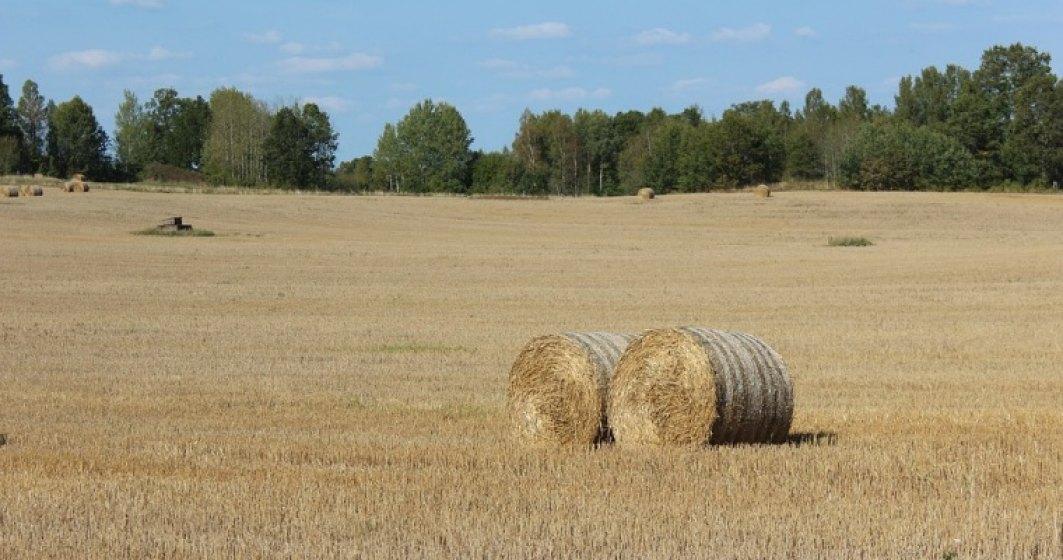 Cat pierd agricultorii din Romania din cauza secetei din acest an