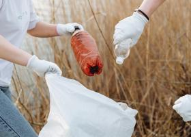 Cum poți recicla PET-uri și primi cash, vouchere sau carduri de fidelitate la...