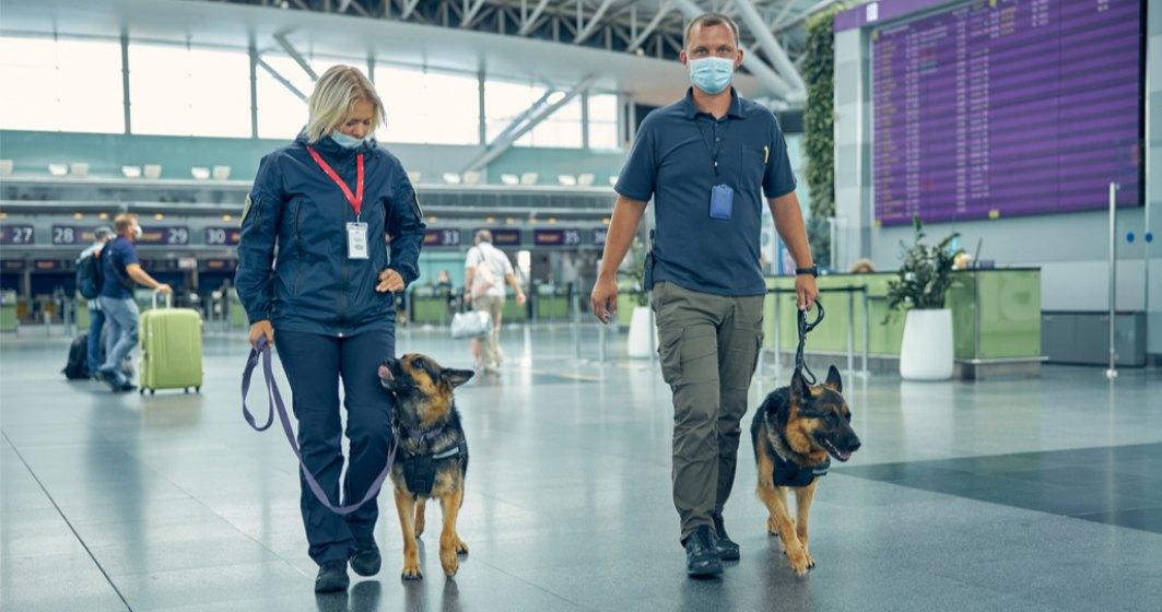 STUDIU: Câinii pot mirosi până la 90% din cazurile pozitive de COVID, inclusiv pe cele asimptomatice