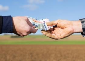 Fonduri europene în agricultură: România va primi 3 MLD. euro în următorii 2 ani