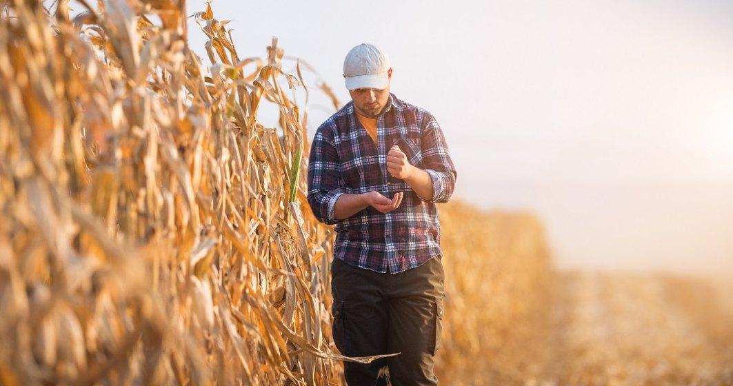 """Ministerul Agriculturii aloca terenuri pentru """"tinerii fermieri"""" si ameninta """"vanatorii de subventii"""""""