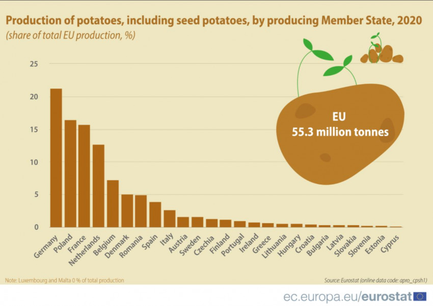 producatori de cartofi UE