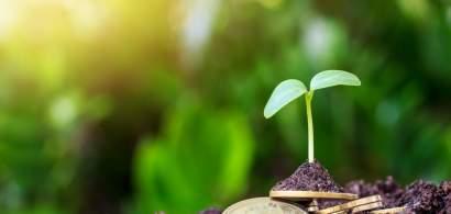 CEC Bank: În 2020, agricultura s-a păstrat pe primul loc în ceea ce privește...