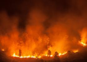 Incendiul care transformă în scrum o insulă grecească nu s-a oprit de trei zile