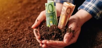 Este agricultura o afacere de viitor pentru tinerii din România? Fermier: Da,...