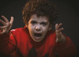 Roxana Paraschiv (Salvați Copiii): Profesorii vorbesc de o agitație a...