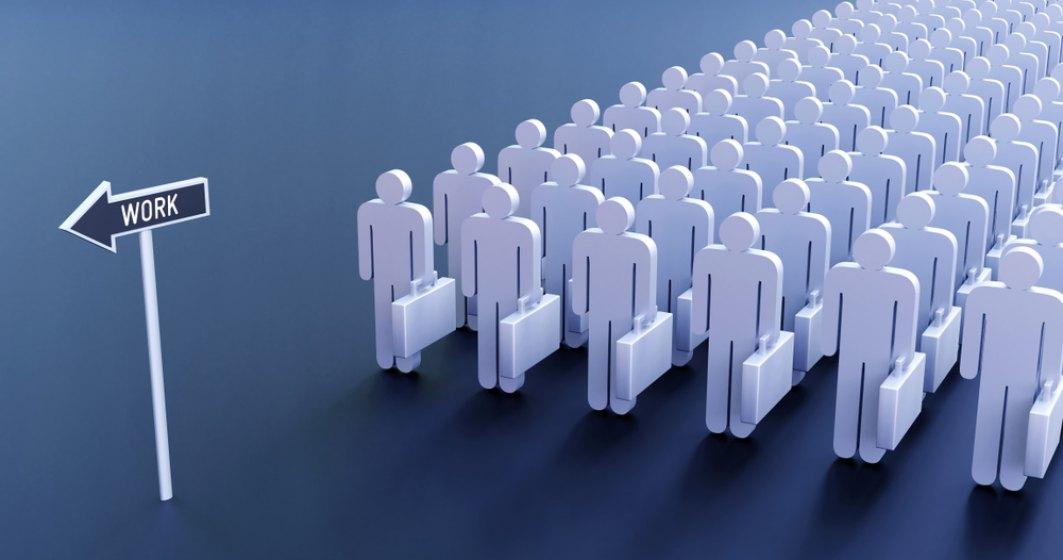 Piața forței de muncă se transformă: Cum se pot adapta candidații la noul context