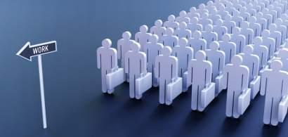 Piața forței de muncă se transformă: Cum se pot adapta candidații la noul...