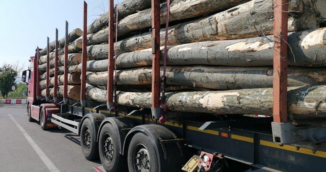 Drulă: Sancțiuni de peste 1,7 milioane lei pentru transportatorii de marfă
