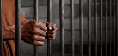 Senatul a adoptat proiectul Alinei Gorghiu, care prevede ca deținuții cu...