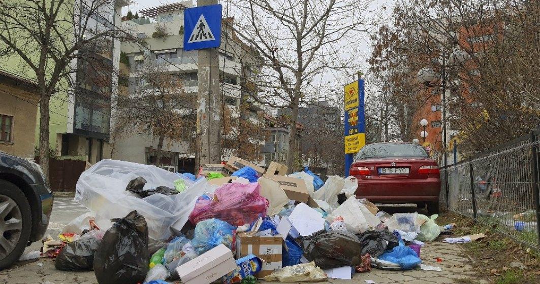 Sectorul 1 din București plătește de 14 ori mai mult decât Oradea pentru ridicarea gunoiului