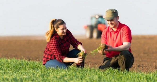Petre Daea promite o lege a terenurilor agricole mai buna pentru cumparatorii...