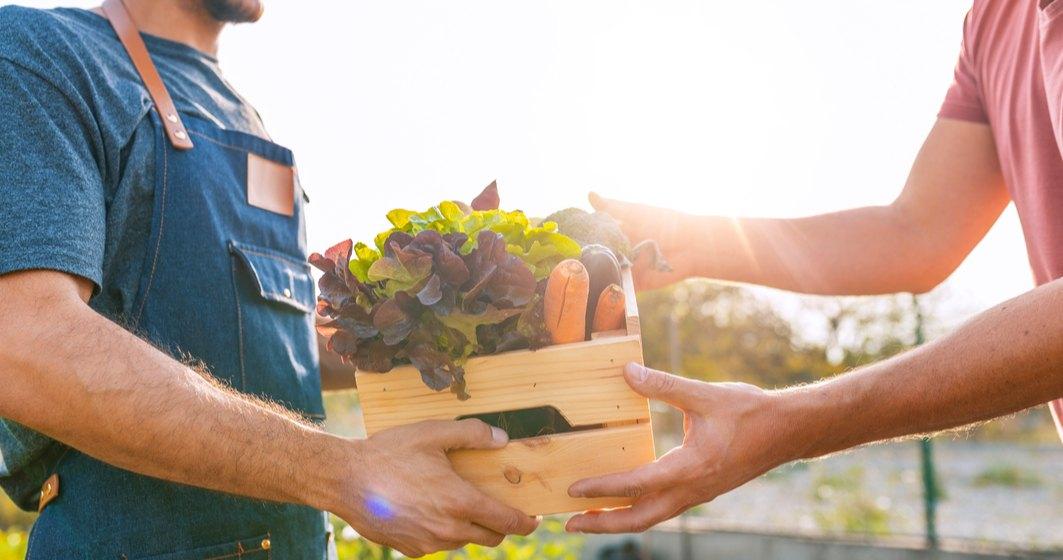Cum funcționează colaborarea dintre cooperative și retaileri. Ce spun fermierii?