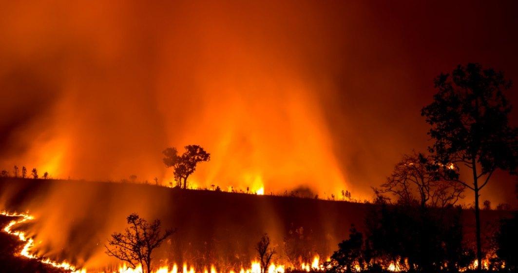 """Australia depaseste o zi critica si se confrunta cu un nou ,,mega-incendiu"""""""