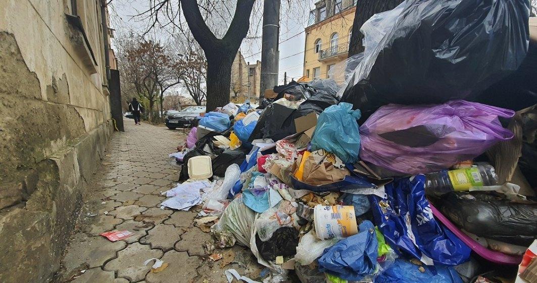 Peste 13 tone de deşeuri, colectate de pe spaţiile verzi din Sectorul 1, într-o săptămână
