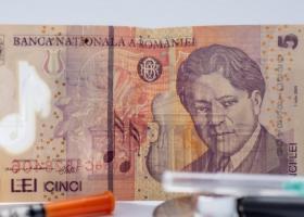 CFA: Leul va continua să se deprecieze în fața euro, iar datoria publică va...