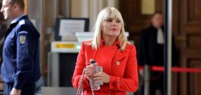 Elena Udrea spune că decizia de condamnare este una absurdă