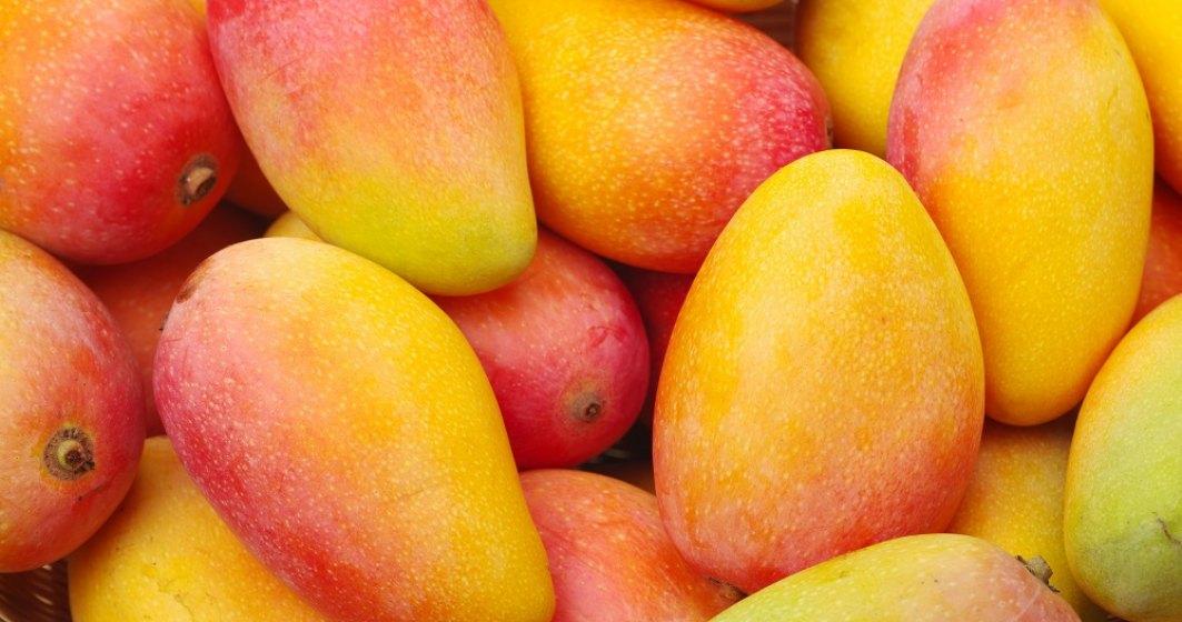 VIDEO  Cum produce o companie olandeză piele vegană din mango