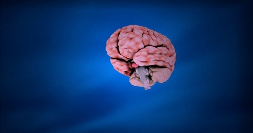 Cand intelegi creierul, ajungi la toti oamenii