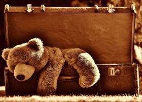 Care sunt cele mai ciudate lucruri pe care le poți lua în bagaj, în avion