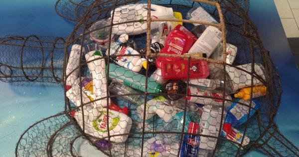 Cum poți recicla ambalajele produselor de îngrijire și obține cadouri sau...