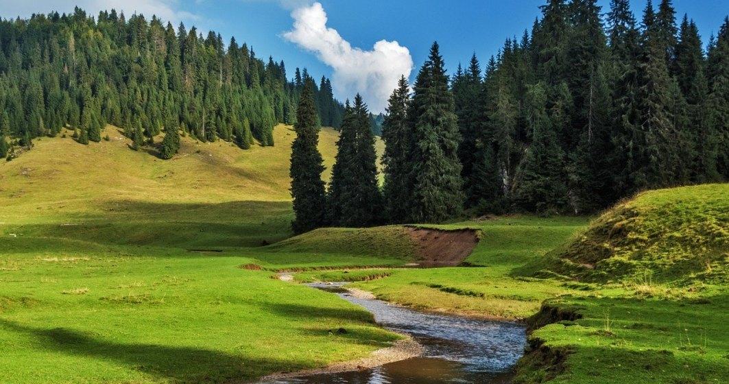 Ministrul Mediului, Costel Alexe, are în plan împădurirea a cel puțin 500.000 de hectare de terenuri degradate