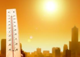 Berea te deshidratează vara? Sfaturile medicilor despre cum poți trece mai...