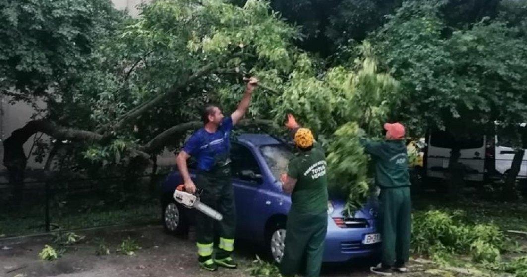 Sectorul 5: Proiect de despăgubire a proprietarilor cu mașini avariate de copacii căzuți