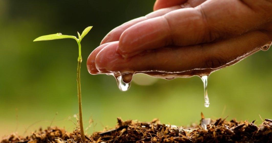 Asocieri cu si despre agricultura ecologica