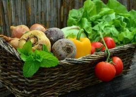 Min. Agriculturii: Legea comercializării produselor alimentare NU avantajează...