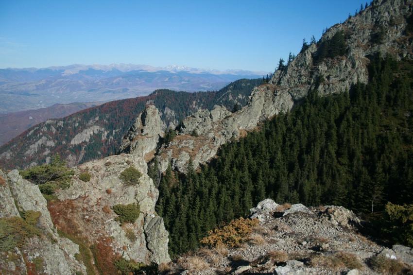 Imagine din zona de creste înspre Vârful Cozia