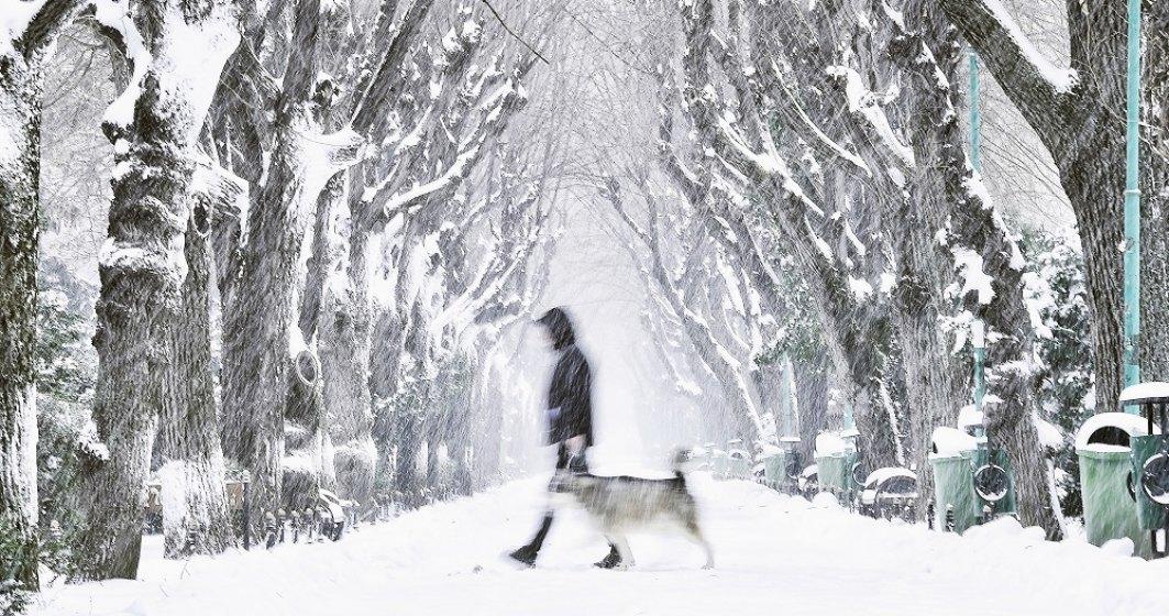 Avertizare meteo: Coduri galbene de ninsori, vânt și polei în mai multe județe