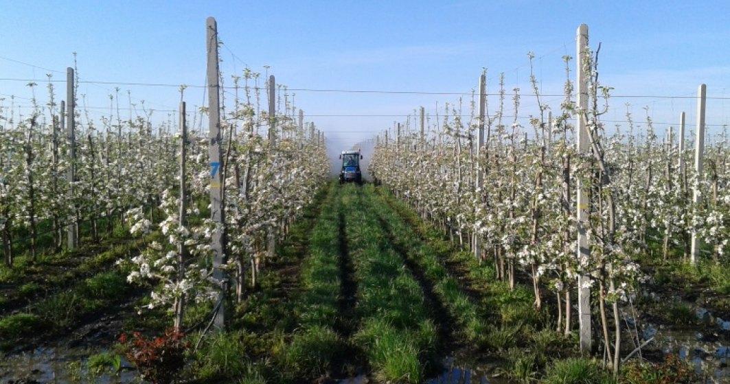Un horticultor din Vrancea vrea sa-si dubleze afacerile in urma unei investitii de 2 mil. euro