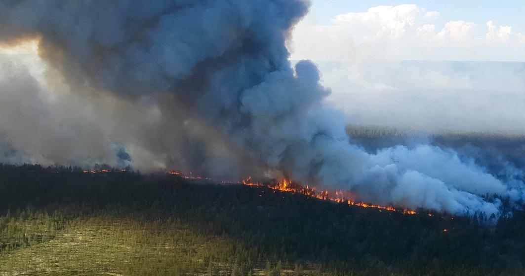 VIDEO   Incendii de vegetație în cea mai rece regiune locuită a planetei